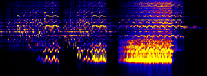 Varuo melodic range spectrogram, time X frequency (log)